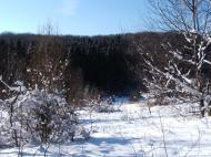 Bükk 2005.01.29 :: A Bükkben voltunk túrázni. Nagyon szép télen is. Imádom.
