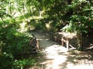 Budakeszi - Vadaspark :: Budakeszi körüli hegyekben túráztunk, majd a vadasparkot is meglátogattuk. Csalódás volt számomra, hogy elhanyagolt ketreceket láttunk. Lehet csak a miskolci után éreztük ezt.