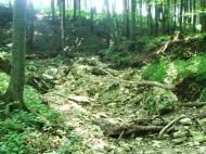 Szekrényeskő :: Szekrényes-kő, Augusztin-tanya, Törkő-lik volt az útvonal, majd a végén Bakonybélen még a Pörgöl-barlang