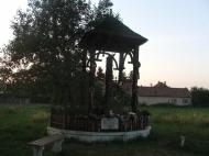 Erdély - Székelykeresztúr :: Székelykeresztúron aludtunk, egy kedves ismerősnél.Meglátogattuk Petőfi körtefáját.